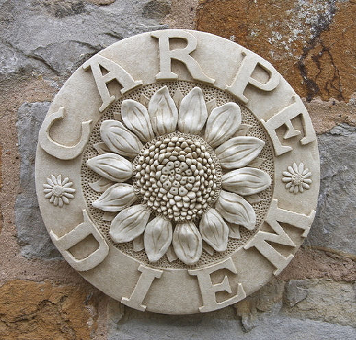 latin wall plaque carpe diem seize the day garden wall plaques find latin wall plaques buy uk. Black Bedroom Furniture Sets. Home Design Ideas