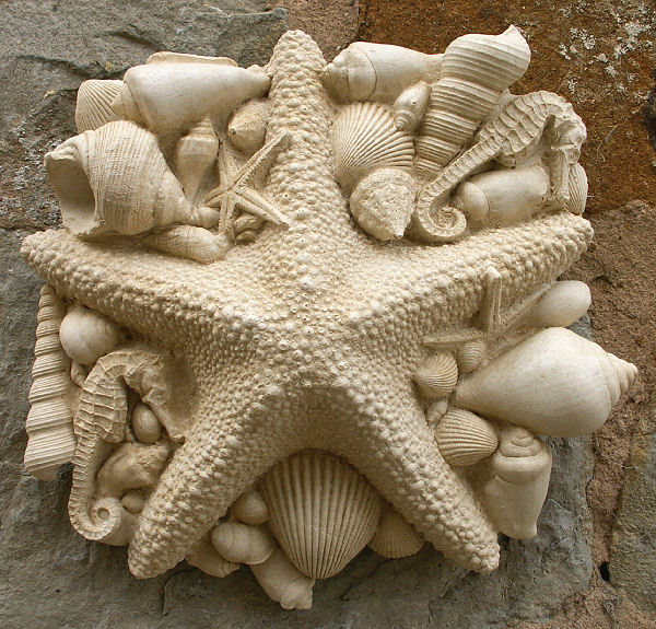 Garden Wall Plaques : Sea Shell Wall Plaques : Sea Wall Plaque