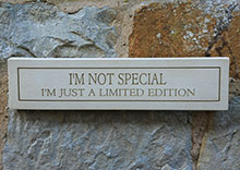 Wall Plaque Im Not Special...